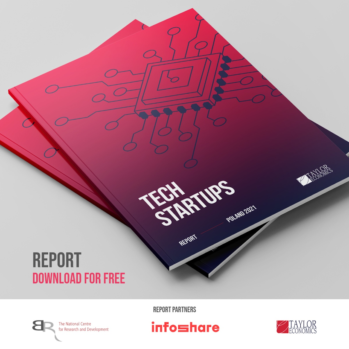 What you find inside the Tech Startups Poland Report?